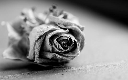 amikor egy szerelem véget ér